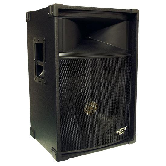 12'' 2-Way Stage Speaker Cabinet