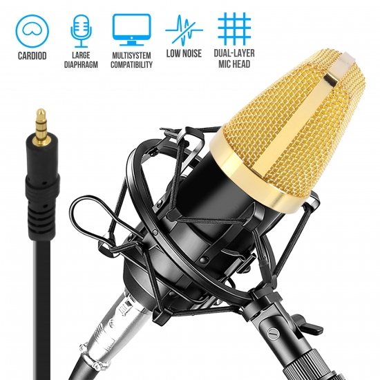 Pyle - PDMIC71 , Musical Instruments , Microphones - Headsets , Sound and Recording , Microphones - Headsets , Cardioid Condenser Microphone Kit - Pro Audio Large Diaphragm Condenser Mic with Shock Mount, XLR Audio Cable