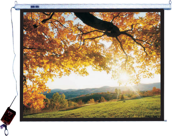 "Pyle - PRJES200 , Home and Office , Projector Screens - Accessories , 200"" Hanging Electronic Motorized Projector Screen"